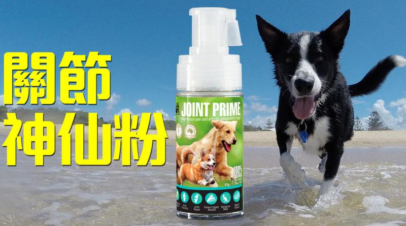 Pet Pet Premier, Joint Prime, Health Prime, 狗狗神仙粉, 關節神仙粉, 狗保健品