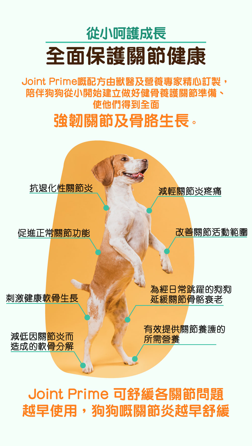 Pet Pet Premier, Joint Prime, Health Prime, 狗狗神仙粉, 关节神仙粉, 狗保健品 | 从小呵护成长 全面保护关节健康 陪伴狗狗从小开始建立做好健骨养护关节准备、使他们得到强韧关节及骨胳发育。 抗退化性关节炎 减轻关节炎疼痛 促进正常关节功能 改善关节活动范围 刺激健康软骨生长 为经常跳跃的狗狗推迟骨骼衰老 减低因关节炎而造成的软骨分解 有效提供关节养护的所需营养 越早使用,狗狗嘅关节炎越早舒缓