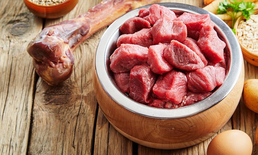 狗狗补钙好重要?3点极速了解钙质与毛孩的关系!鲜食/狗粮/猪肉/牛肉/骨头