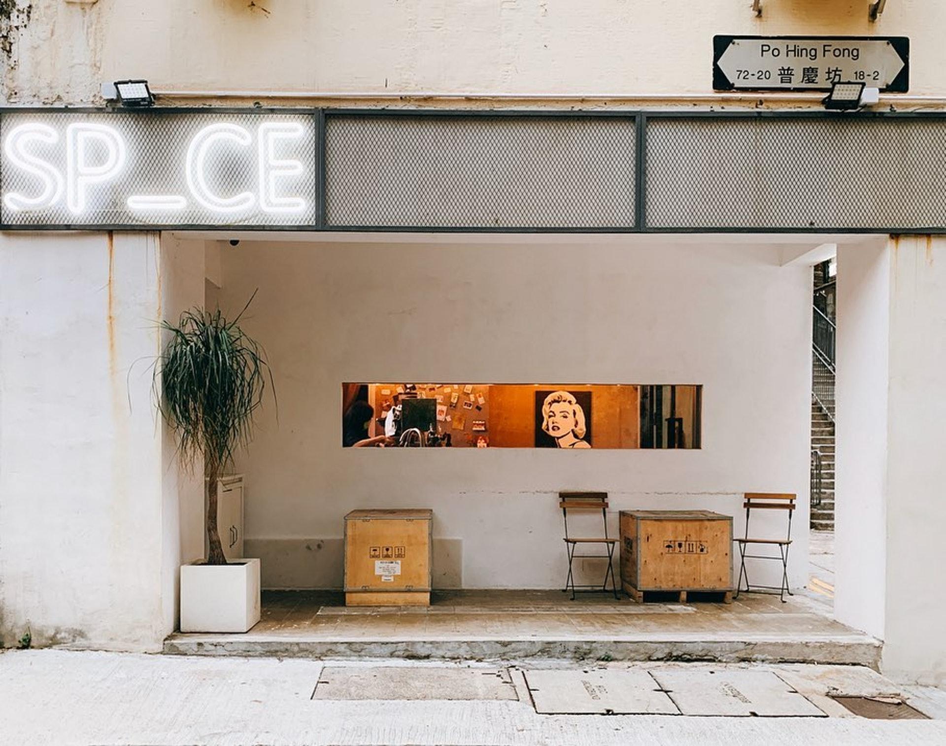 狗狗好去处 / SP_CE cafe & lounge